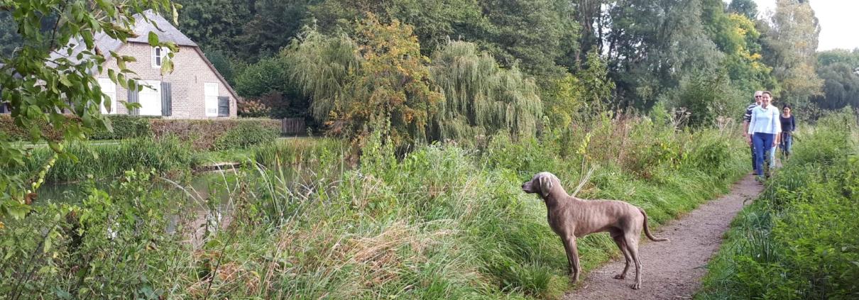 wandelen over het kromme rijnpad